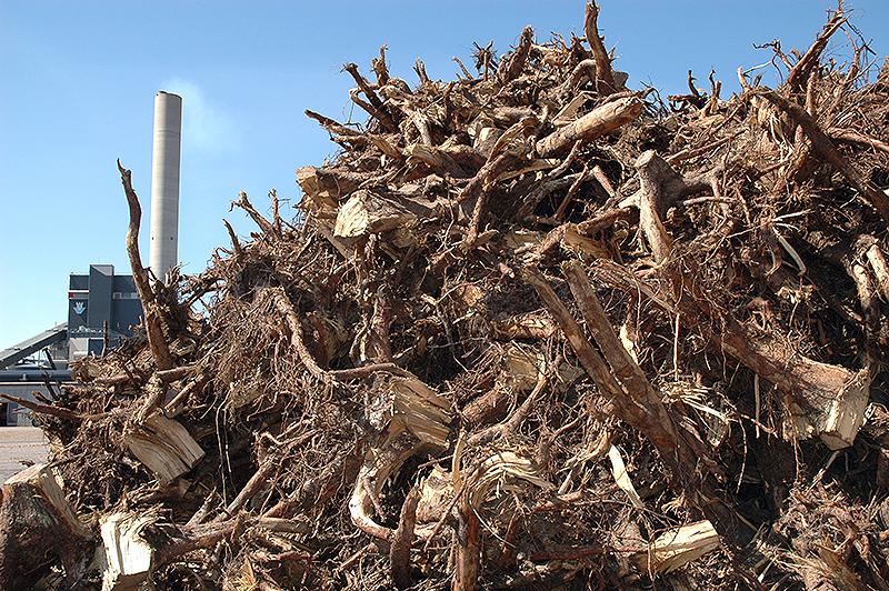 Hakkuiden seurauksena metsiin jäävä puu saadaan kehittyneillä korjuutekniikoilla hyötykäyttöön lämpövoimalaitoksen polttoaineeksi. Kuusikkohakkuista voidaan hyödyntää myös kannot.